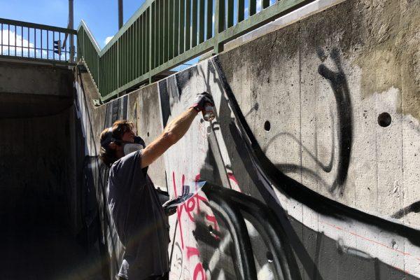 Graffiti | Illusionsmalerei | Hannover | Raschplatz | Urban Jungle | 21