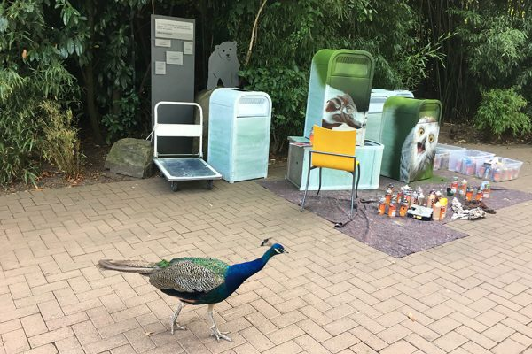 Graffiti im Zoo Hannover 2018