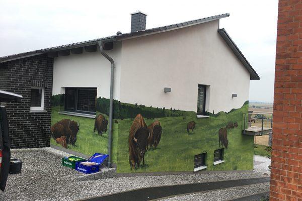 Graffiti Fassade