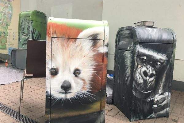 Late Zoo